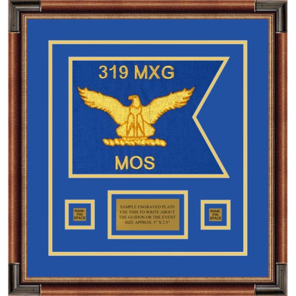 """Air Force 12"""" x 9"""" Guidon Design 129-D1-M1 framed"""