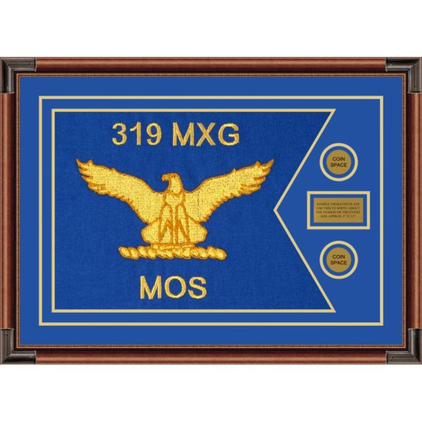 "Air Force 28"" x 20"" Guidon Design 2820-D1-M4 Framed"