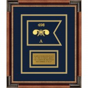 """Chemical Corps 7"""" x 5"""" Guidon Design75-D1-M1 Framed"""