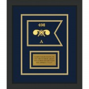 """Chemical Corps 7"""" x 5"""" Guidon Design 75-D1-M2 Framed"""