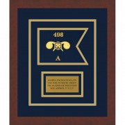 """Chemical Corps 7"""" x 5"""" Guidon Design 75-D1-M3 Framed"""