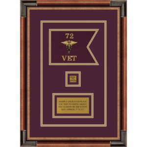"Framed Veterinary Corps 7"" x 5"" Guidon Design 75-D2-M1"